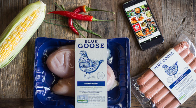 Blue Goose Food Photography